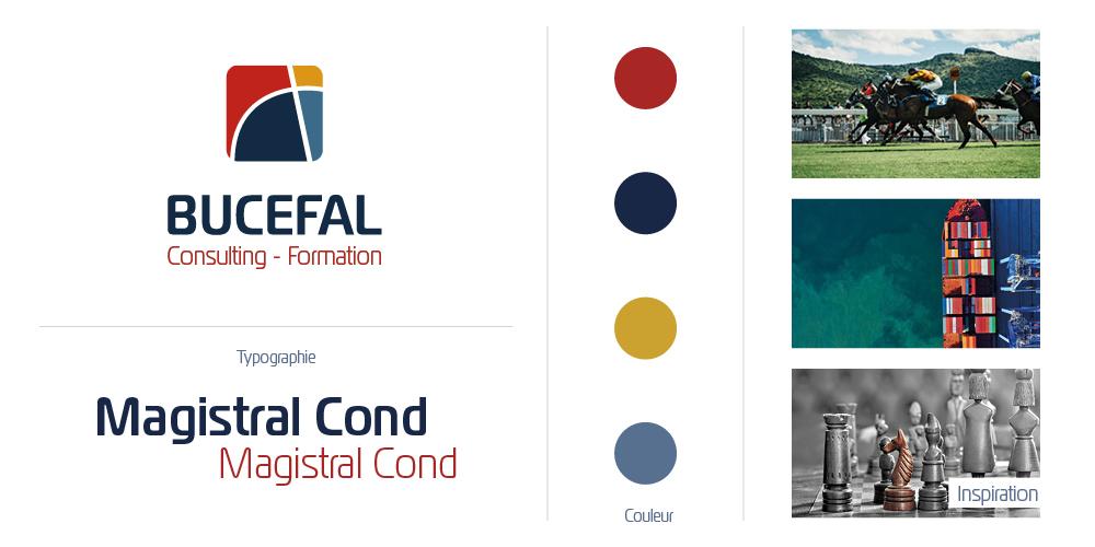 Mise en avant du logo de BUCEFAL Conseil et Formation